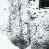 YFP017-139.jpg